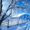Mevsimler Kış